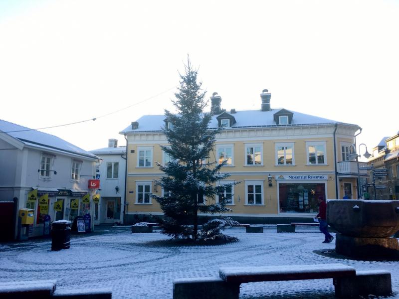 Норртэлье 2020, шведский детектив в маленьком городе. На север от Стокгольма.