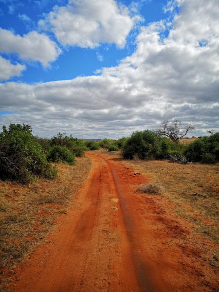 Бюджетное сафари в Кении и жизнь в Ватаму