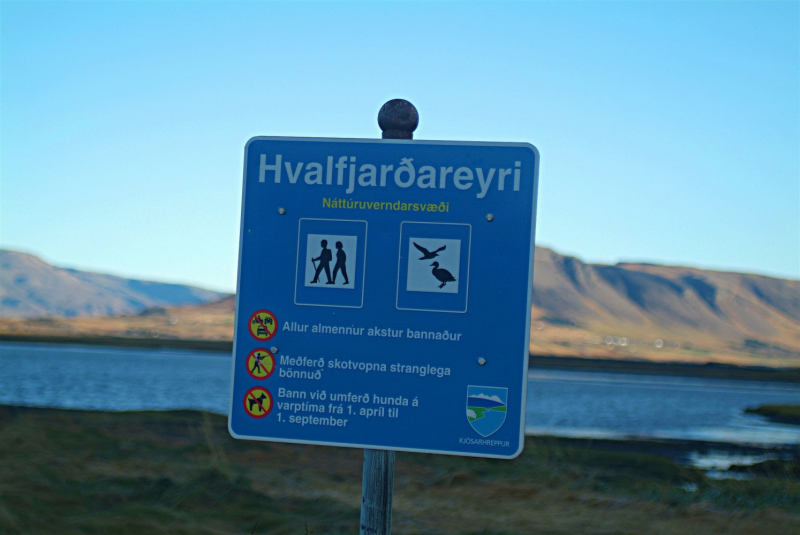 Hvalfjörður. Остатки англо-американской базы, самый маленький маяк, 2 затонувших судна, вытащенные на берег. Октябрь 2020.