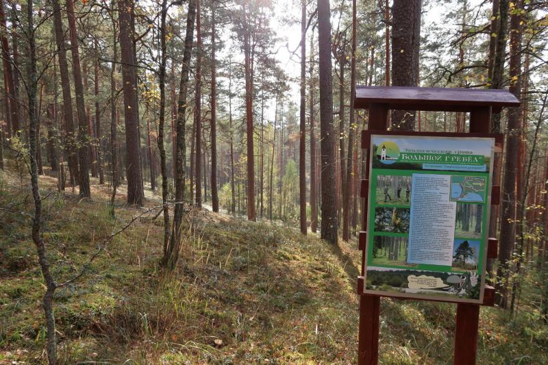 Небольшая тропа по Большому Гребелу (Себежский национальный парк, Октябрь 2020)