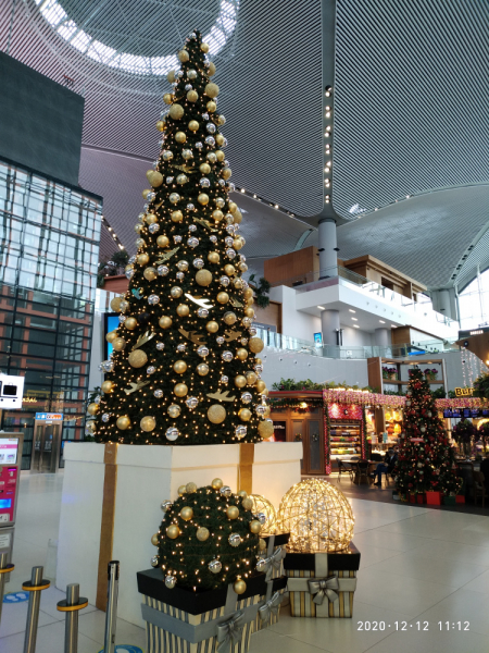 Месяц в Германии. Локдаун. Карантин. Рождество. НГ и прочие мелкие радости жизни.