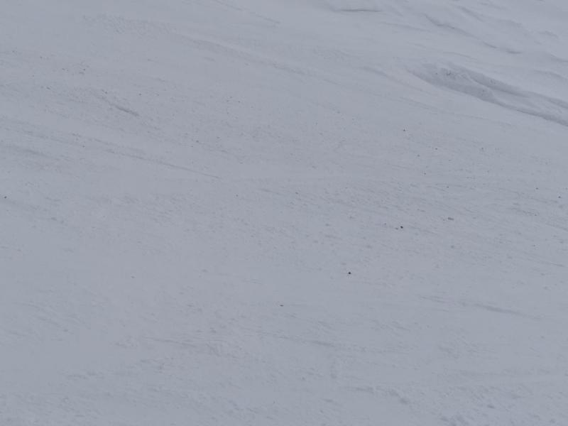 Горные лыжи в короноистерию. Архыз и Эльбрус