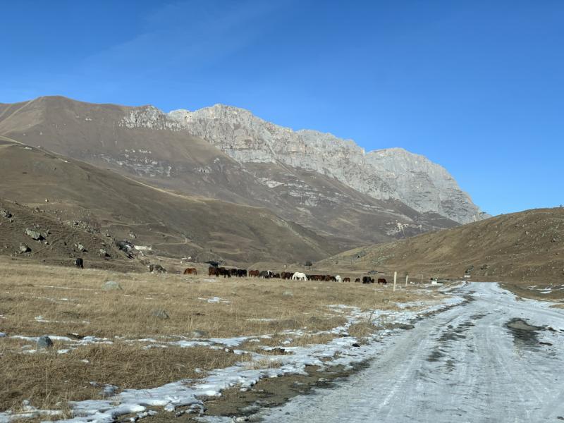 Северная Осетия и окрестности на Новый Год 2021.