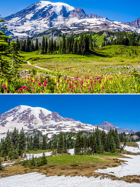 Восемь дней неброуновского движения по штату Washington (июль 2020)