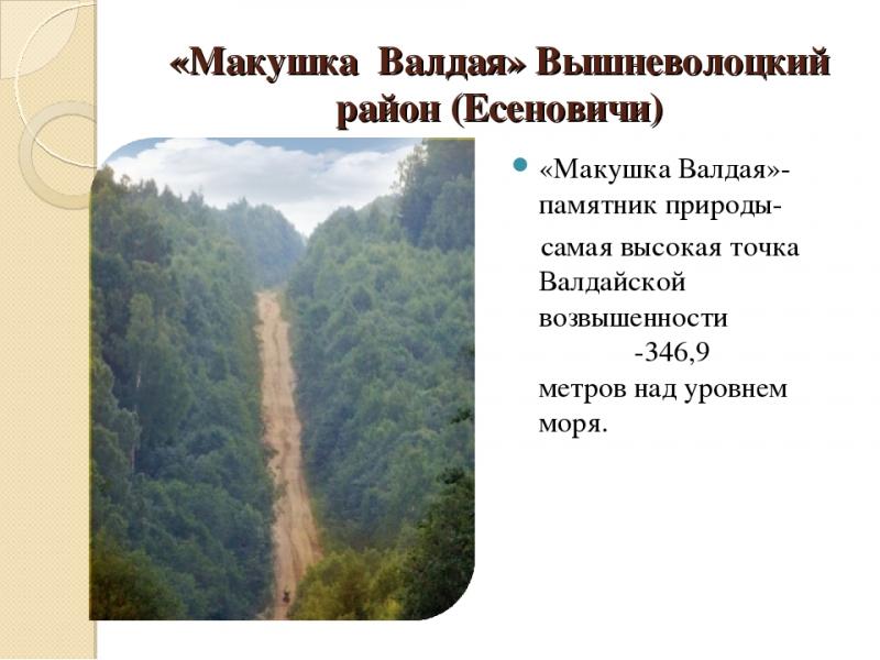 """Автовояж """"Белые дороги"""": главные реки России"""