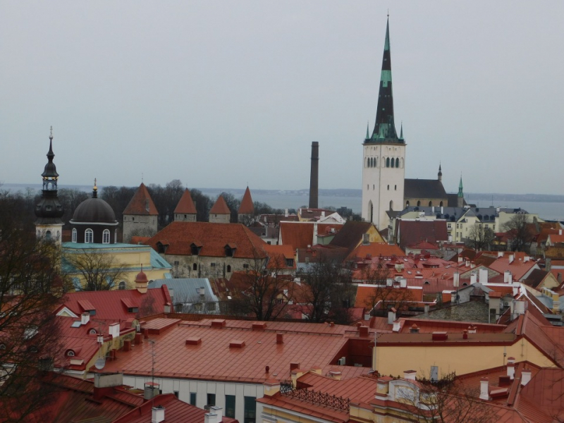 Солнце и дождь Эстонии. Февраль 2020