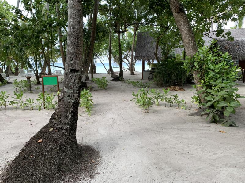 Fihalhohi Island Resort – февраль 2021