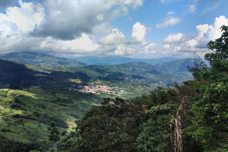 Колумбия 2021. Год одиночества.
