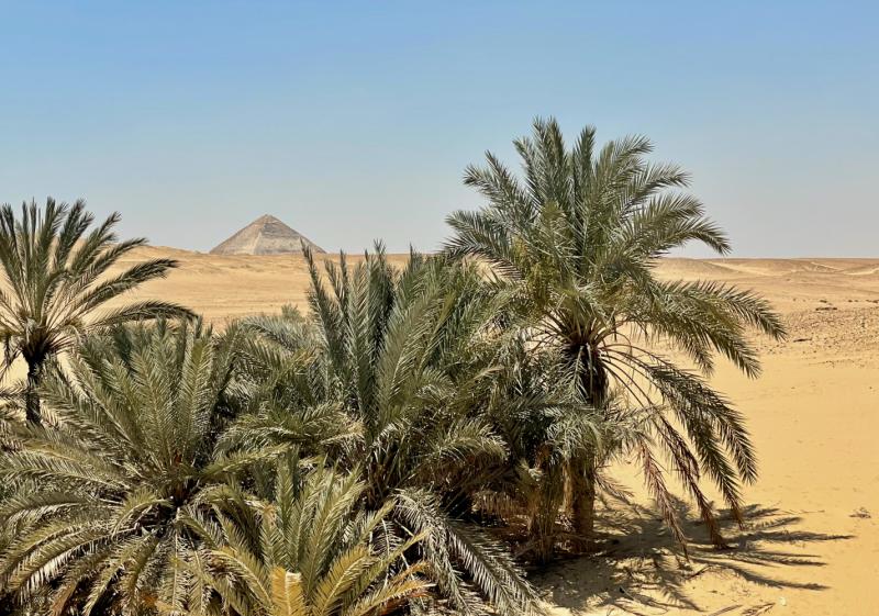 Шарм-Синай-Каир, Майские 2021