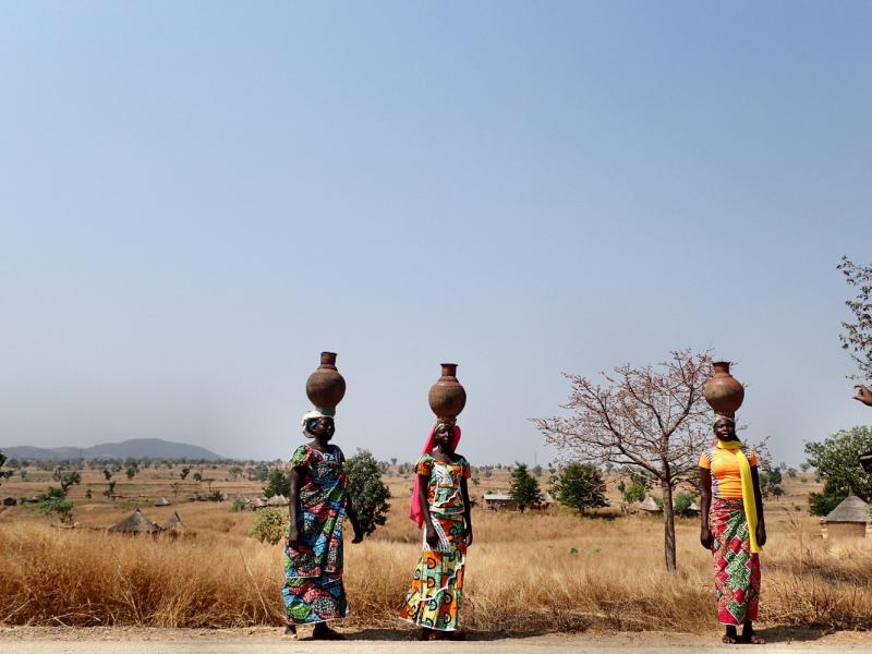 В гостях у Чебурашки, или Воспоминания об Африке. Камерун-ЦАР-Габон