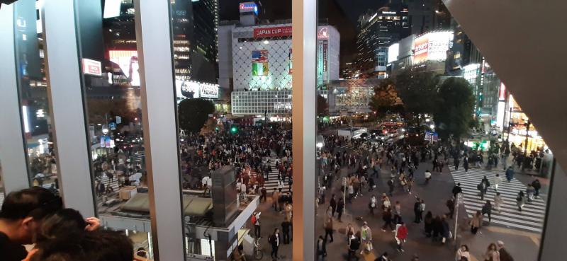 13 дней в Японии в ноябре 2019.