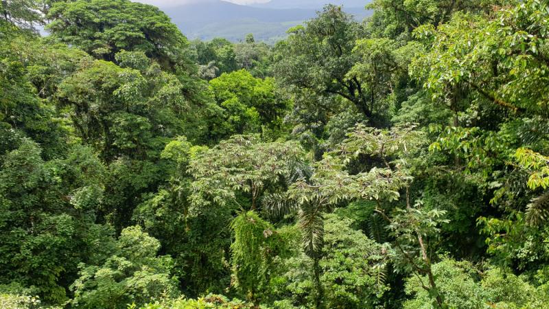 Путешествие от Панамы до Мексики во время Ковид (апрель - май 2021)