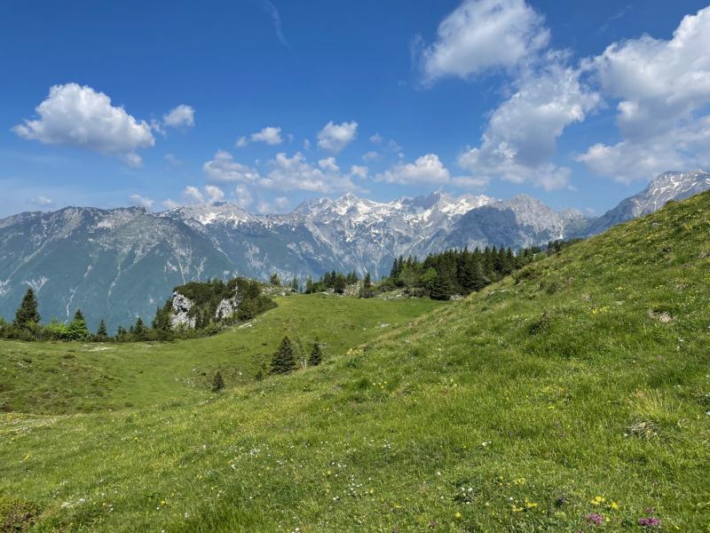 Velika Planina, июнь 2021