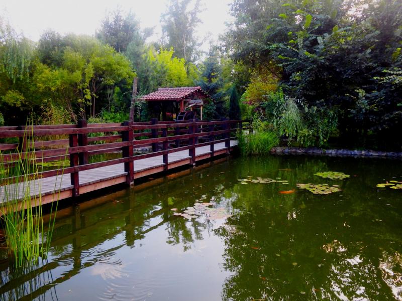 АБАКАН - город степной. ХАКАСИЯ - земля пяти стихий
