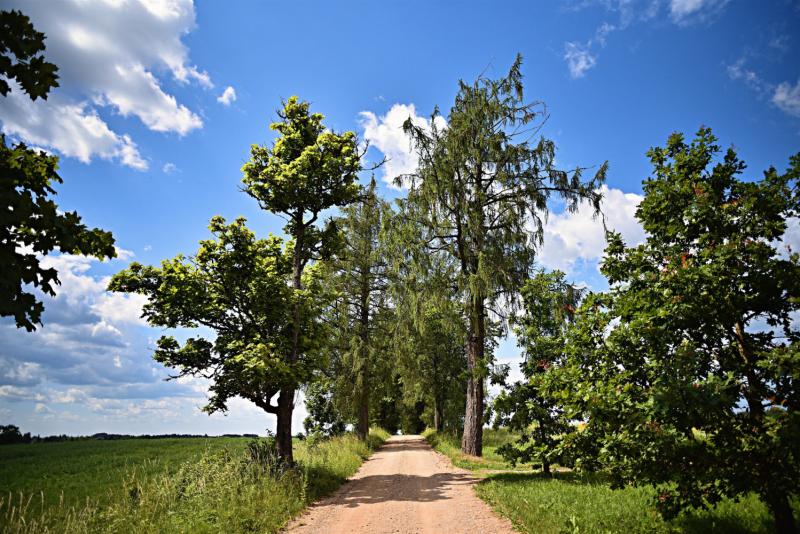 Рижское взморье и национальный парк Гауя. ( (санаторий Белоруссия, поездка в Мазирбе, мельница в Āraiši,утесы Ķūķu)