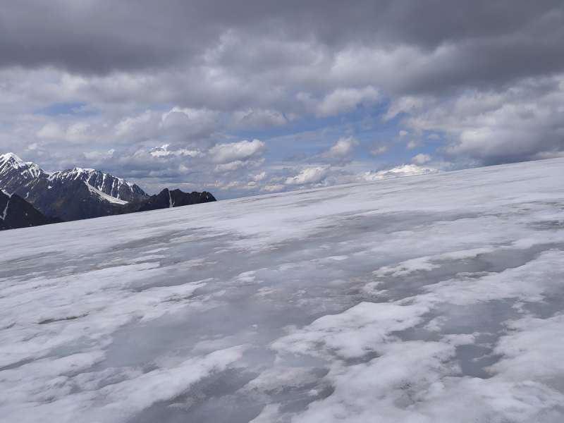 Царство ледников, снежных вершин, быстрых рек, густых лесов. Алтай. Июль 2021.