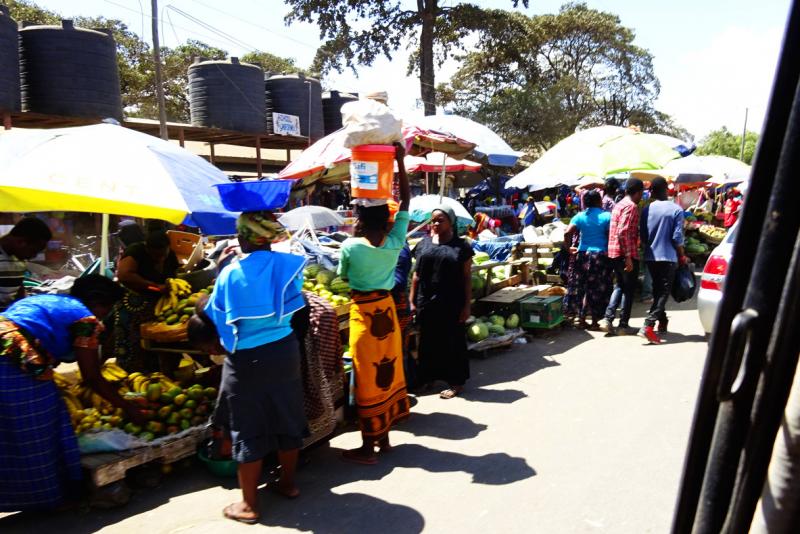 Путешествие по Танзании (остров Занзибар и сафари в парках Танзании)