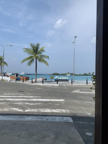 Мальдивы. Февраль 2021 самостоятельно на месяц.Sun Island Resort & Spa