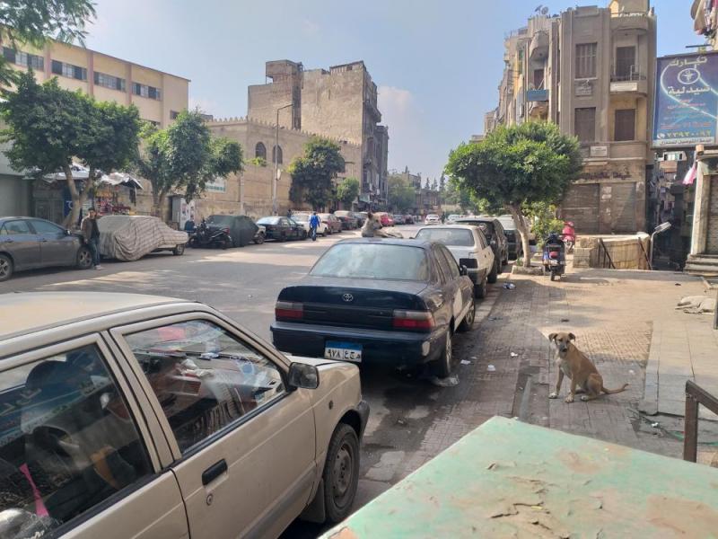 Каир без грязи - возможно ли?