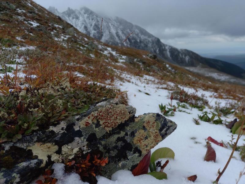 Из Иркутска на выходные: походы в горы Бурятии