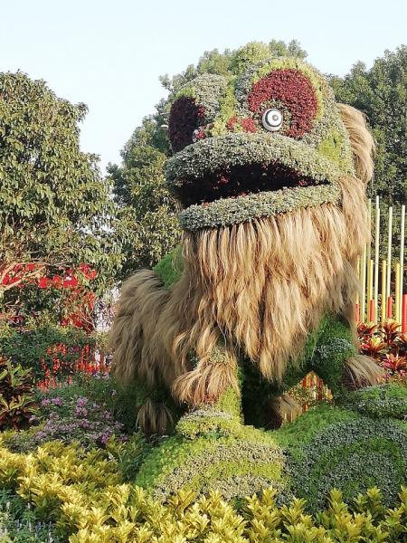 Я и моя любимая провинция. Гуандун. 我和我爱的省。广东