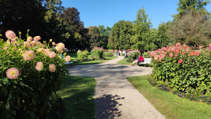Вокруг Баден-Бадена И Бодензее. Октябрь 2021.