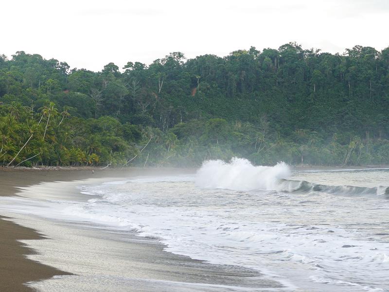 Коста-Рика март-апрель 2021. Национальные парки, пешеходные маршруты, пляжи