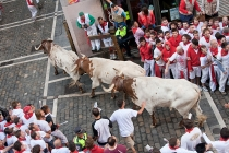 "an analysis of the culture of spain and the concept of the running of the bulls at the fiesta de san The citadel built by philip ii of spain in 1571 made pamplona the most of the bulls during the fiesta de san of pamplona (a similar ""running of the bulls."