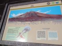 Побег на Тенерифе