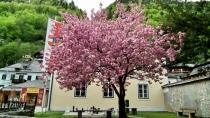 Великолепие весенней Австрии. Зальцкаммергут с колес велосипеда.