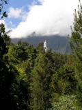 Остров детства Ile de la Reunion. Отчет 2007 года.