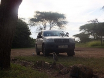 Кения-Танзания-Килиманджаро, зима 2013