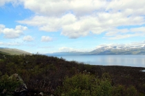 рыбалка в норвегии: северная норвегия, лофотены, в норвегию с собакой,