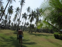 Туристические форумы тайланд поиск тура тайланд из омска
