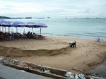 Таиланд. Стерпится – слюбится (Что ж мы, на зимние квартиры…