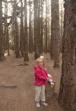 Тенерифе. По лесам, горам и паркам с ребенком 4,5 лет. Октябрь 2013.