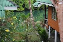 Репортаж с орхидеей на шее