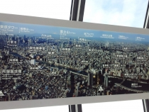 Зимний Токио глазами обывателей