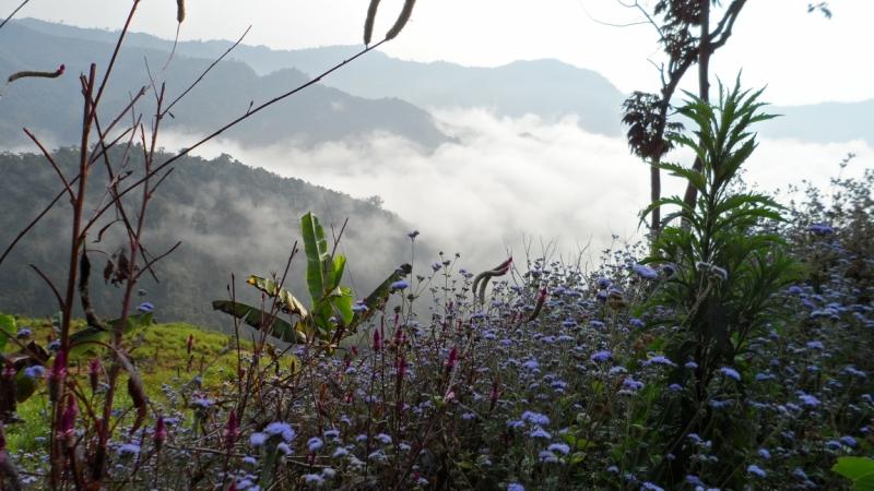 Лаос. Кто был в Пхонгсали?