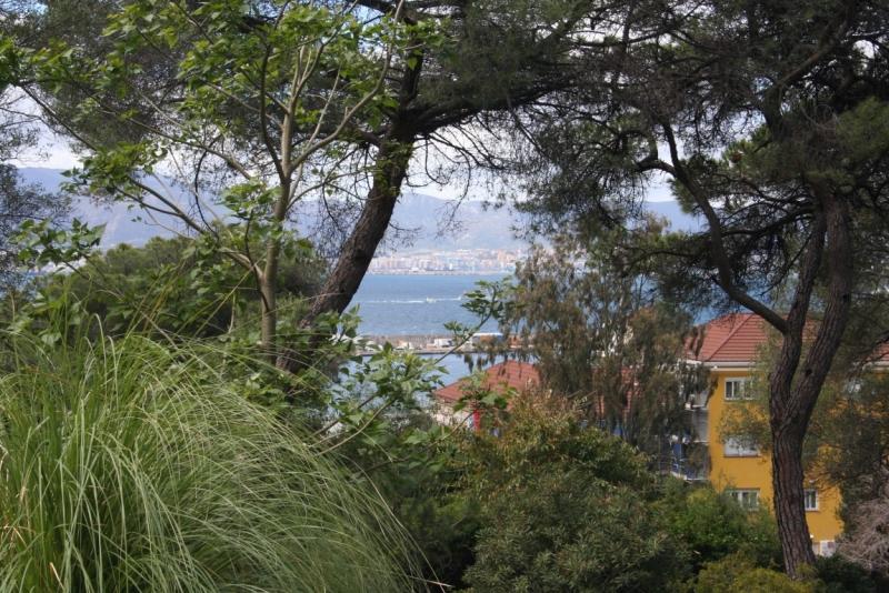 Costa Mediterranea: трансатлантический круиз из Гваделупы в Савону, весна 2014