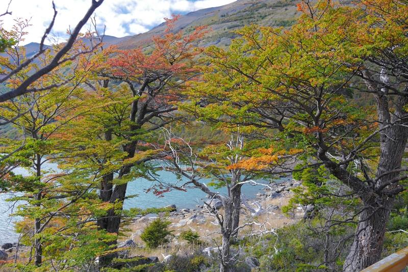 Патагония Аргентина: от Барилоче до Эль Калафате на автомобиле
