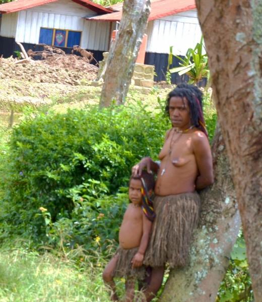 Там за зелёными холмами аборигенов странный вид. Зап. Папуа, Тимор, Флорес, Комодо. 2013