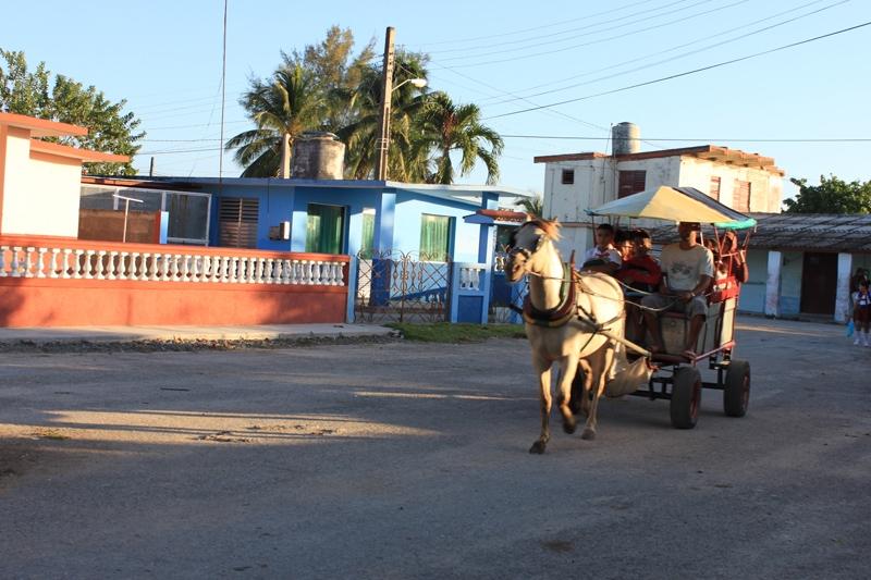 """Куба с детьми 2 года и 7 лет """"Большое кольцо"""""""