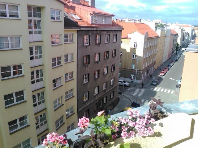 Марафон. Прага-2014