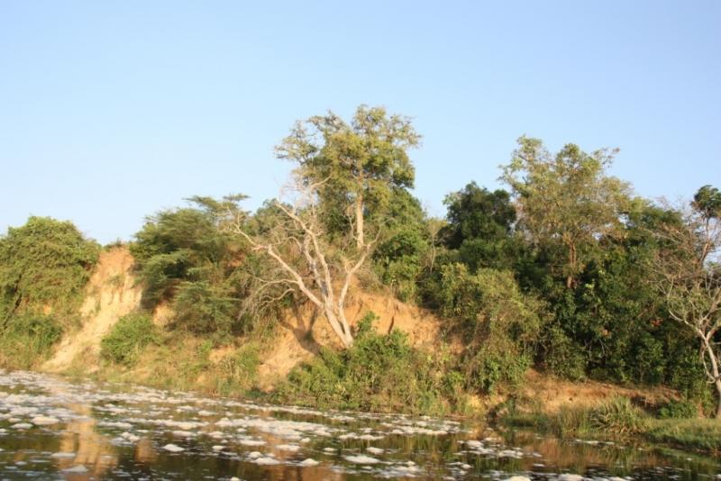 «Не ходите дети в Африку гулять!» Часть 2. Уганда