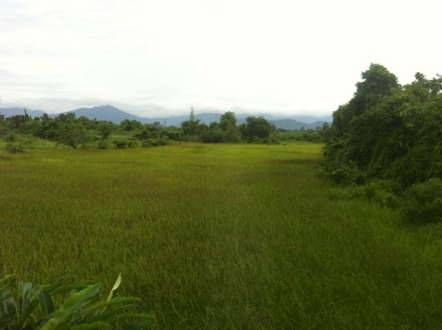 Поездка в Пенанг за визой или как не нужно быть расп…ями