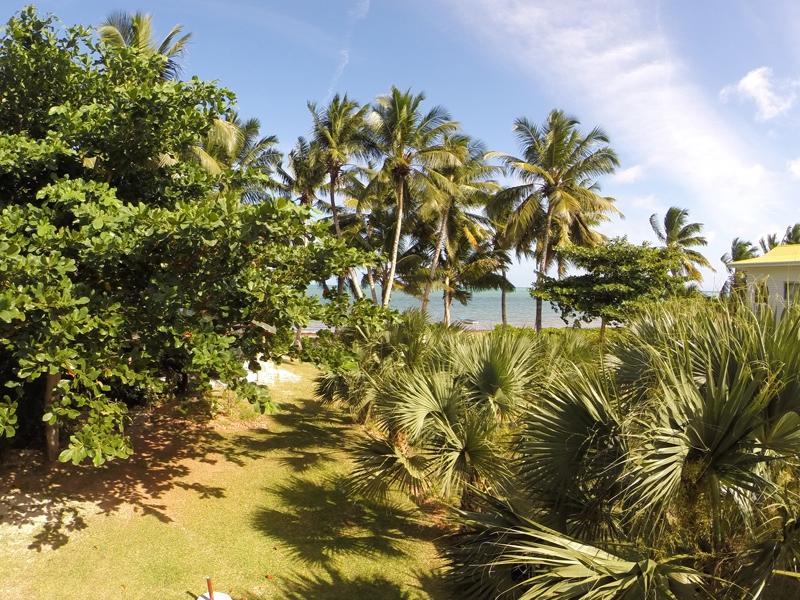 Отели на Праслин (Praslin), Сейшелы. Обсуждение и поиск всех видов жилья