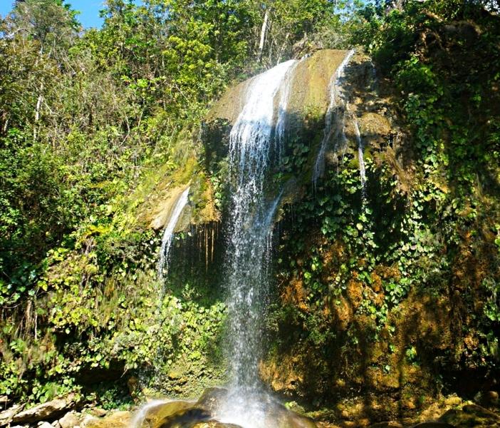 Возвращение тропикоза…или 3-е пришествие через 10 лет(апрель 2014)