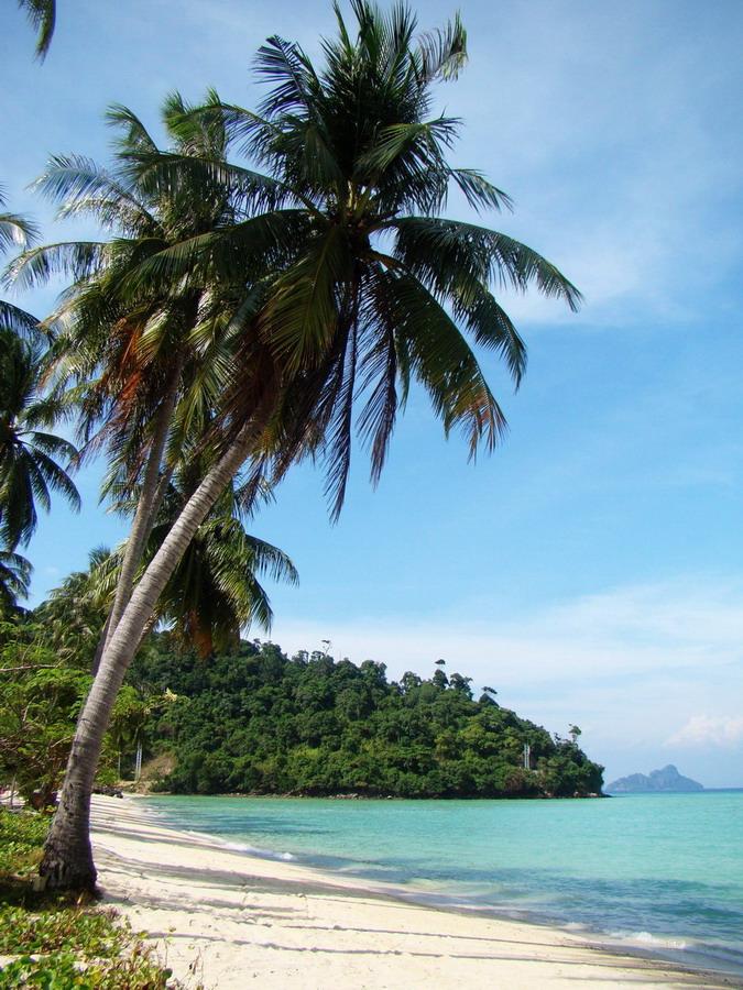 Днем, баунти картинки острова