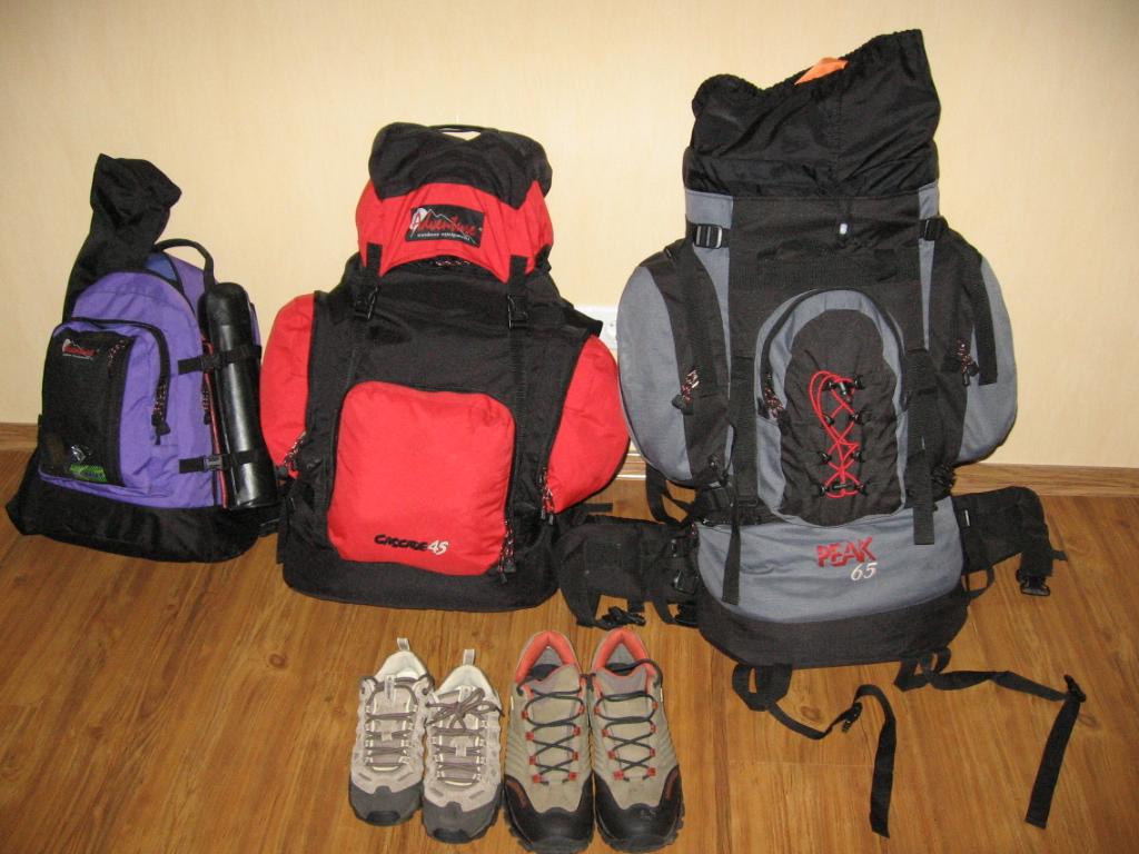 Что лучше брать в заграничную поездку чемодан или рюкзак рюкзак на колёсах школьный детский